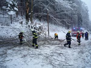 Hasiči odstraňovali několik popadaných stromů.