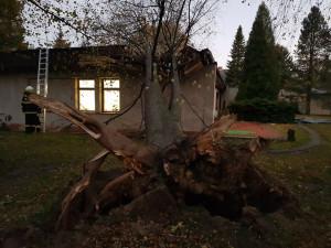 Strom spadl na školku v Hejnicích.