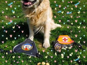 Hasičský pes Charlie oslavil o víkendu 11 let.