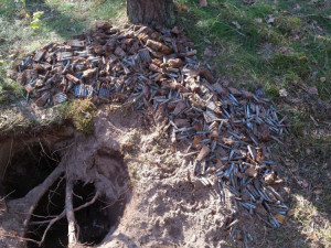 Hledač kovů našel skoro sto kilo munice