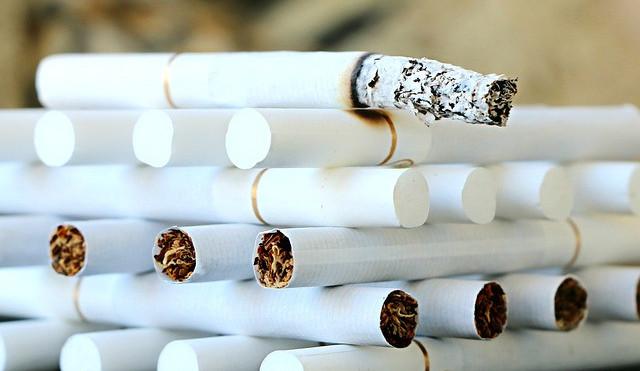 Z Polska pašovali cigarety a tabák, státu způsobili desetitisícové škody