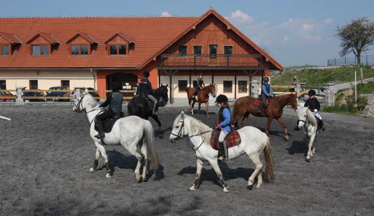Vždycky vás lákala práce s koňmi? Vyzkoušejte si ji na Farmě Vysoká u Chrastavy