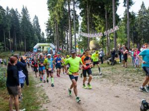 Běhej lesy.
