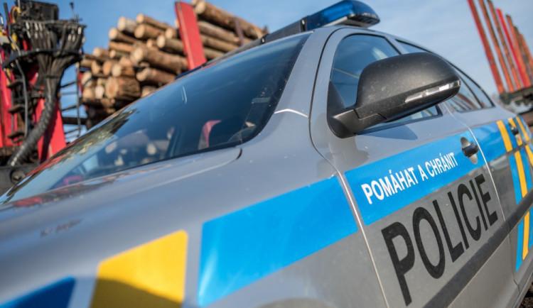 Při silniční kontrole objevili policisté hledaného cizince