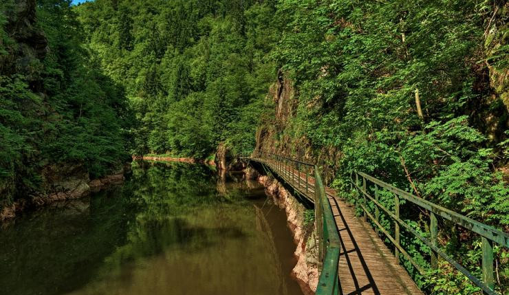 O čistotu a vzhled Riegrovky bude pečovat město společně s turisty a skauty