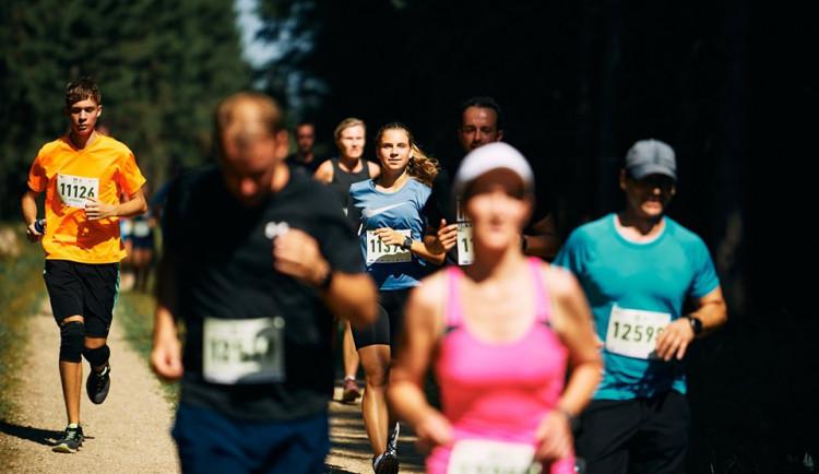 FOTO, VIDEO: V zimě na běžkách, v létě po svých. Jizerská přilákala 2 396 běžců