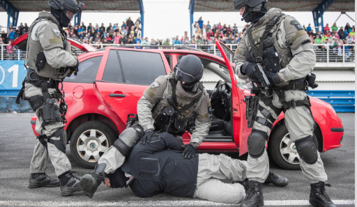 Zajištění pachatele, práce psovodů i jízdní policie. To vše nabídne Den s policí v Sosnové