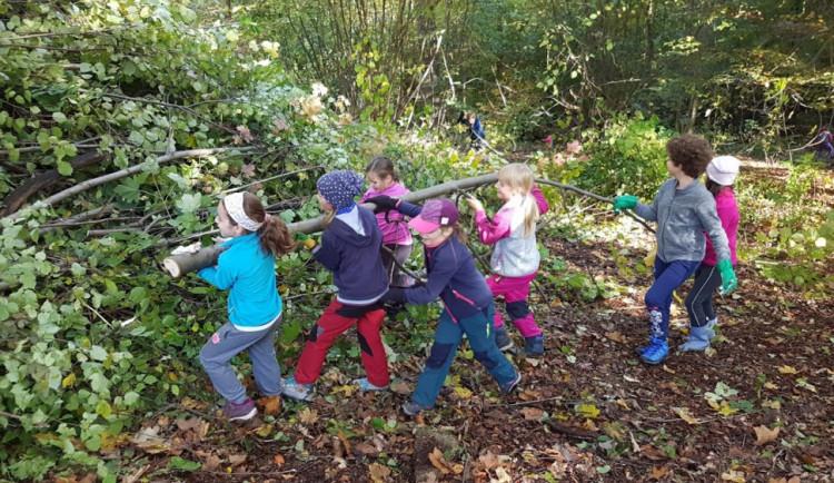 Na 250 skautů vyčistilo les v Lidových sadech. Nasbírali kontejner odpadu