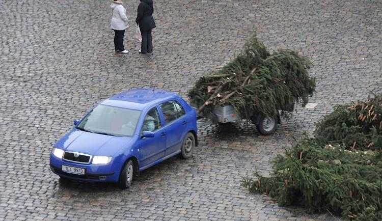 Likvidace vánočního stromu