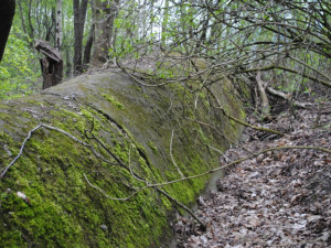 12. Dálniční propustek stále odvádí vodu s polí