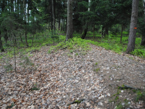5. Dálniční těleso směrem ke Spáleništi