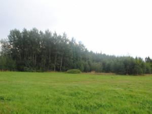Pohled od letištní dráhy, která se tímto směrem měla rozšiřovat a i díky tomu musela vila pryč. Na rozšíření už ale nedošlo.